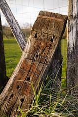 Bancal (patoche21) Tags: bourgogne bourgognefranchecomte cotedor europe france bois texture patrickbouchenard burgundy wood