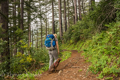 Big Sur edited pics-16 (MufasaPhoto) Tags: backpacking bigsur camping ocean redwoods thrive