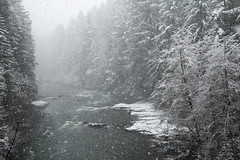 South Santiam River in snow, Oregon (icetsarina) Tags: oregon winter santiam river water throughherlens topf505074faves