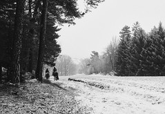 The ride home (mripp) Tags: art vintage retro old landscape landschaft drackenstein black white mono monochrom bayern germany deutschland forest snow scheme winter rider horse pferd peered riding