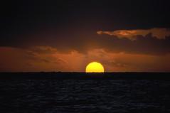 Farewell (johan van moorhem) Tags: canarianislands canarischeeilanden islescanaries lagomera vallegranrey sunset zonsondergang beach strand zee ocean farewell cecilewilmotte costumésdevenise regardsvénitiens