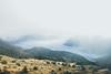 _MG_3736 (waychen_C) Tags: nantou renai renaitownship hehuanshan hehuanmountain fog mist taiwan 台灣 南投 仁愛 仁愛鄉 合歡山