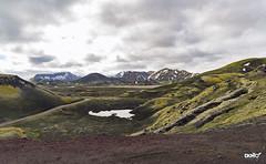 Landmannalaugar (DKMO Photographie) Tags: dkmo strasbourg alsace laurentfrauli travel islande iceland landscape paysage voyage mountain montagne landmannalaugar green red