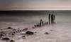 Kellenhusen - Anno (Pana53) Tags: photographedbypana53 pana53 naturfoto kellenhusen ostsee langzeitbelichtung schwarzweisfotografie landschaft buhnen balticsea meer wasser buhnenreste steine nebel fog nikon nikond500 schleswigholstein himmel sky