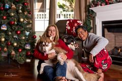 Christmas 2017 w: Sue, Sitka, Juneau,& Len 03 (JUNEAU BISCUITS) Tags: nikond810 nikon hawaiiphotographer family ohana portrait portraiture familyportrait hawaii christmas2017 christmastree siberianhusky husky dog pet waimea