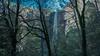 "Yosemite National Park . Caifornia /USA. Bridalveil Fall (Feridun F. Alkaya) Tags: yosemite falls ""yosemitefalls"" tags yosemitenationalpark california ngc usa nature unescoheritagelist unc yosemitevalley waterfalls elcapitan halfdome geological 500v20f tree sky mountain rock water forest wood river"