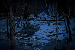 A cold winter evening. (kwtracyghostship) Tags: pennsylvania commonwealthpa frickpark alleghenycounty westernpa kwtracyghostship pittsburgh unitedstates us dusk moody cold evening frosty creek woods nature outside mood hiking night