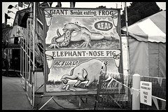 Walker Evans influence (hutchphotography2020) Tags: statefair carnaval weird posters abnormalities iphone
