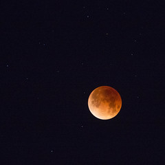 blood moon totality (eb78) Tags: totality ca california eastbay superbluebloodmoon lunareclipse albany bloodmoon bluemoon supermoon fullmoon
