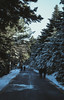 Walking people on icy road (sotirisdimi) Tags: parnitha greece snow mountain deer mushroom