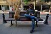 Tel Aviv (Hemo Kerem) Tags: israel telaviv street a7rm2 a7rii minoltamdwrokkor24mmf28 tlv 24mm manualfocus mf minolta wrokkor rokkor sony sonya7rm2 ilce7rm2 alpha