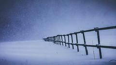 Through Black Clouds. (icarium82) Tags: canoneos5dmarkiv canonef85mmf12liiusm winter surreal landscape erzgebirge snow nature landschaft schnee frozen quote bluetint fence zaun sundaylights