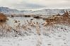 Fresh Snow - 9609b+ (teagden) Tags: fresh snow landscape landscapephotography scenic jenniferhall jenhall jenhallphotography photography nikon utah utahwinter winter freshsnow