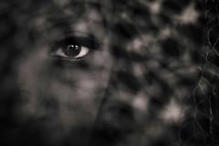 Hidden (fehlfarben_bine) Tags: nikond800 sigmaart500mmf14 portrait closeup eye hidden naturallight woman beauty expression contrast gaze berlin gotbycarlthankyouxo yourewelcomexo