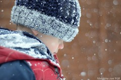He loved the snow (MadeleineVanWijkPhotography) Tags: