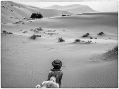 P2260146-bewerkt (RieksKamphuis) Tags: marokko morocco monochrome blackandwhite bw zwartwit zw travel olympus olympuspen pen penf 17 mm olympus17mm aroundtheworld