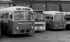 Ulsterbus AEC Reliances at Ballymens (AllyJay2006) Tags: northernireland uta ulsterbus aecreliance aec ballymena ballymenastation bus 6266ez 6240ez bristollh foi1647
