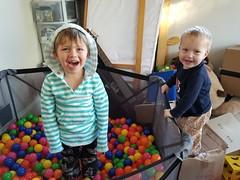 Ball pit (quinn.anya) Tags: sam paul toddler preschooler ballpit