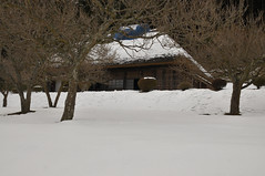 Old farmer's house (Light & shadow believers) Tags: snow landscape oldhouse winter farmer wood