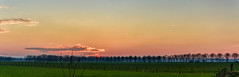 driving home (stevefge) Tags: 2017 beuningen sunset winter sundown sky glow road trees bomen landscape panorama fields reflectyourworld nederland netherlands nl nederlandvandaag gelderland