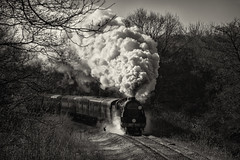 Taking Flight (Nimbus20) Tags: bluebell railway steam winter frost exhaust train loco smoke cold clear sunshine sussex england