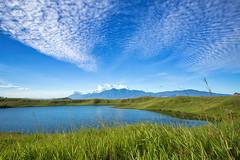 Imfote Lake (Jokoleo) Tags: danau sentani jayapura papua indonesia lake green grass outdoors doyo landscape bay sky sea water forest field ngc tree imfote love telaga cinta mount mountain
