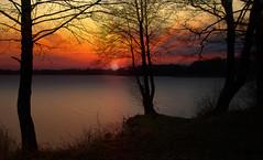 sundown (augustynbatko) Tags: sundown lake nature sun trees tree water landscape grass sky clouds sunset park mist