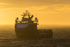 Stril Barents Windy Sun (SPMac) Tags: stril barents simon møkster shipping vard psv06 lng arctic circle sea norway goliat sun windy spray glow