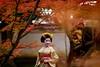 Maiko_20171120_12_23 (Maiko & Geiko) Tags: myokakuji temple fukuno kyoto maiko 20171120 舞妓 妙覚寺 ふく乃 京都 宮川町 河よ志 miyagawacho kawayoshi mait
