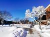 A sunny day after the blizzard (Atibordee_K) Tags: mankato minnesota unitedstates snow white blizzard mobile phone
