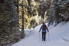walkin' in the snow (clabattis) Tags: lagorai passocinquecroci rifugioconseria valcampelle neve