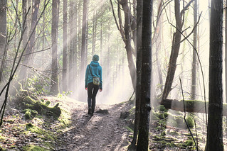 Misty Trail at Gowlland Tod Park