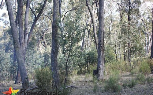 300 Mt Haven Way, Meadow Flat NSW 2795