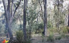 300 Mt Haven Way, Meadow Flat NSW