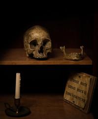 Vinitas (DanGarv) Tags: d810 stilllife skull famouspainting art bruyn krollermullermuseum death sb700 westcott rapidbox