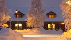IMG_4372 (Mr Thinktank) Tags: raureif frost