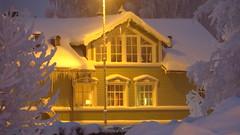 IMG_4365 (Mr Thinktank) Tags: raureif frost