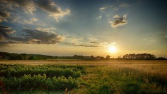 *** (pszcz9) Tags: hdr polska poland przyroda nature natura pejzaż landscape zachódsłońca sunset słońce sun roztocze lato summer pole field beautifulearth sony a77