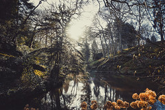 Bodnant Gardens, Conwy (TheVuePoint) Tags: national trust flowers garden public winter walk photogr photography photographer photo photoshop lightroom edited filter landscape river rapids laburnum arch pergola lake private song sony alpha a6000 flower walking wales north conwy bodnant gardens january 2018 uk great outdoors green symmetry