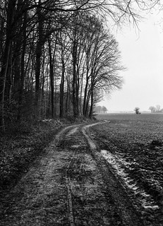 road to...mud
