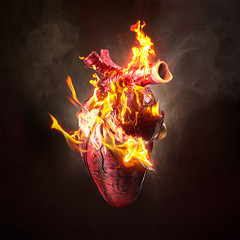 When you told me you loved me (Hayley Roberts Photography) Tags: love heart digitalmanipulation montage art composite dark photography photograph valentine romantic fire red smoke black alight flames passion phoenix ignite heat light burn