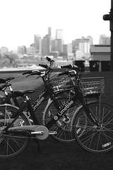 Joy rides (briannalhendricks) Tags: canonrebelt6 canonrebel canon citylife northwest pnw seattle cityscape city cycling bikes biking