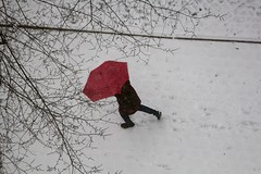 Red umbrella (stephencharlesjames) Tags: red umbrella snow weather central park new york city