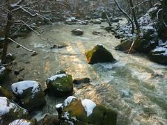 Wilde Eifel (Jörg Paul Kaspari) Tags: irrel dieprüm fliesgewässer eifel naturpark südeifel gewässerlandschaft flus river winter
