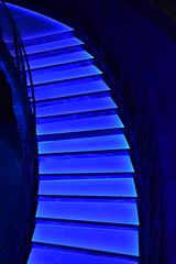 Blue Lighted Stairs (Adventurer Dustin Holmes) Tags: 2018 blue stairs steps wondersofwildlife lighted nationalmuseumaquarium nationalmuseumandaquarium