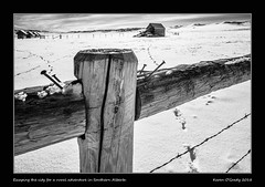 Escaping the city for a rural adventure in Southern Alberta (kgogrady) Tags: infrared landscape winter alberta canada