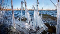Ice accumulate, Weerwater Almere (Alex Verweij) Tags: skyline almere ijssculpture ice weerwater cold freezing vriezen winter 2018