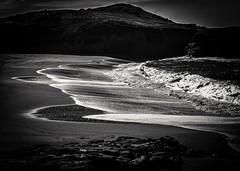 Bean Hollow Beach 01 B&W (Charlie Day DaytimeStudios) Tags: beach beanhollowstatebeach ca california coastline highway1 landscape ocean pacificcoast pacificcoasthighway rocks surf