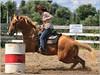 Paris Fair - Barrel Racing 58 (2.5 Million + views!!! Thank you!!!) Tags: canon eos 70d 70200mm ef70200f4l psp2018 paintshoppro2018 efex topaz paris fair ontario canada barrelracing sport action horses horse