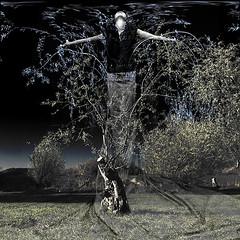 fragile (old&timer) Tags: composite surreal song4u oldtimer imagery digitalart laszlolocsei